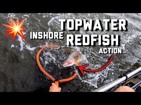 Inshore Fishing With Topwater Lures | Mobile Bay Kayak Fishing