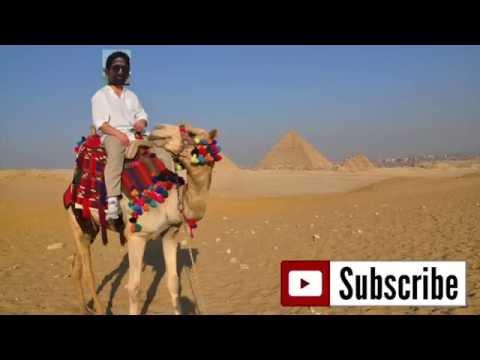 Afzal Tobacco: Pan Masala Supreme Review
