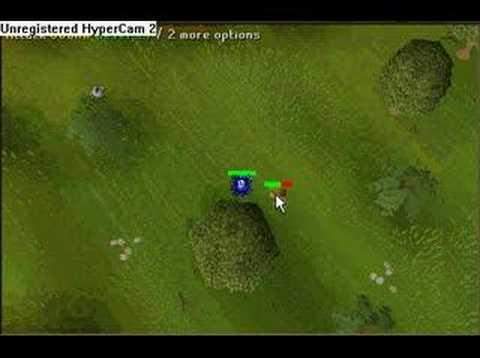 Runescape: Goblin Drops a Dragon Skim