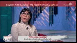 14/12/20181 - Attenti al lupo (TV 2000) -