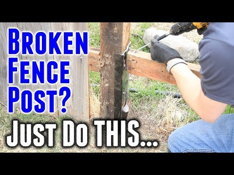 How to Fix a Broken Fence Post in Under 30 Minutes