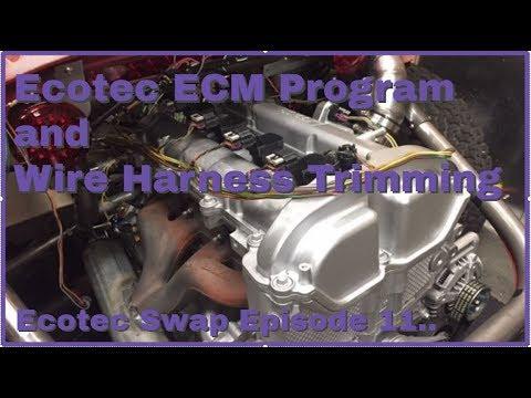Ecotec ECM Program and Harness trimming