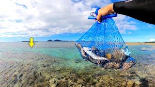 【離島生活】リーフの釣りでいくら稼げる?驚きの金額を公開します。