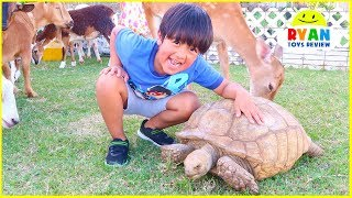 Surprise Ryan with Zoo Animals at our House!!!!