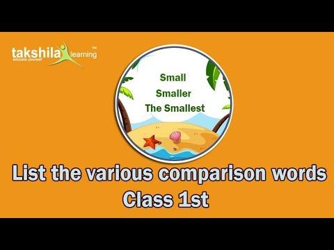 Use of Comparison wordCBSE Class 1st Mathematics Online Classes