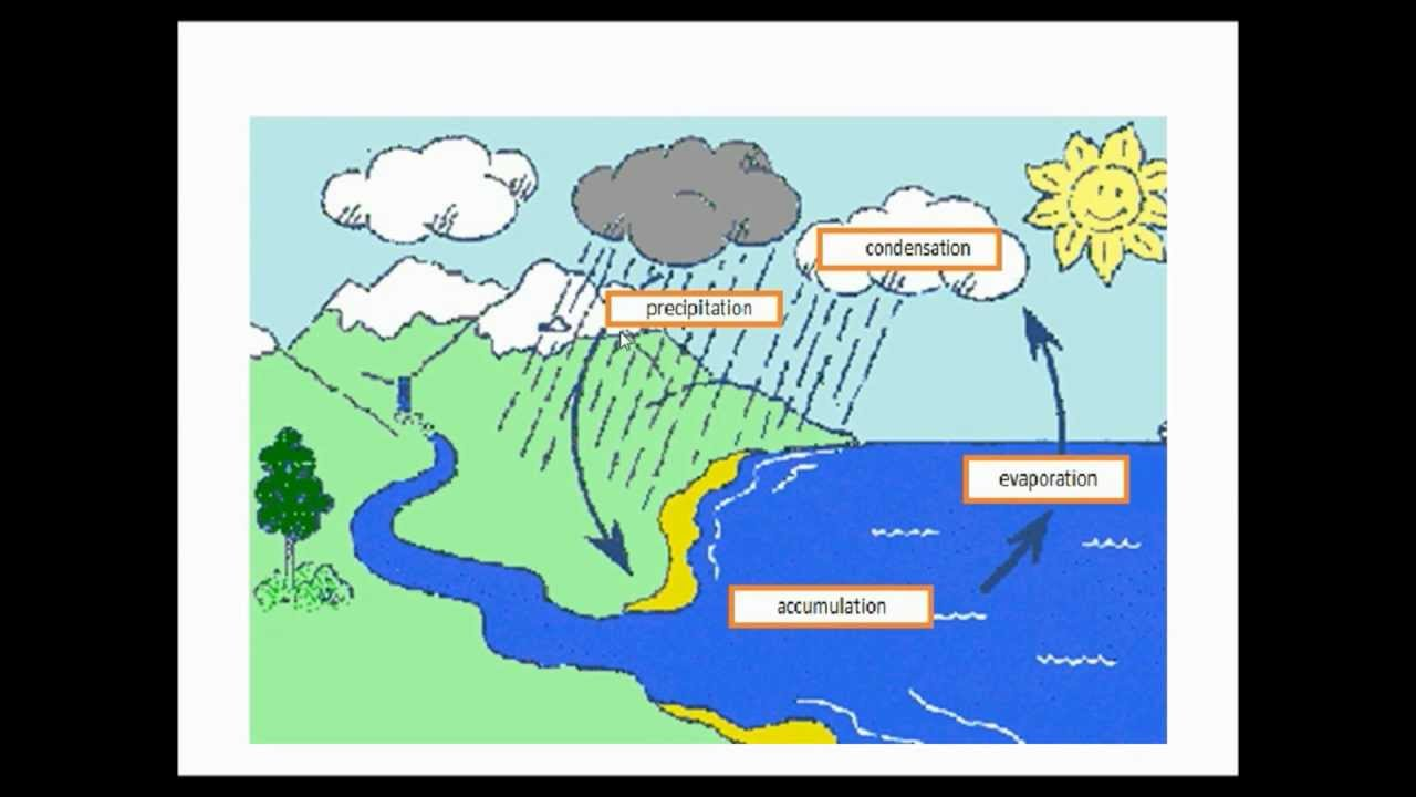 Water Cycle Lesson - YouTube
