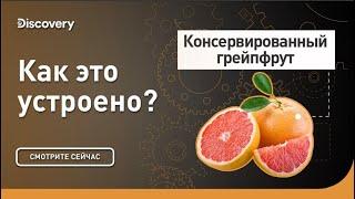 Консервированный грейпфрут | Как это сделано? | Discovery Channel