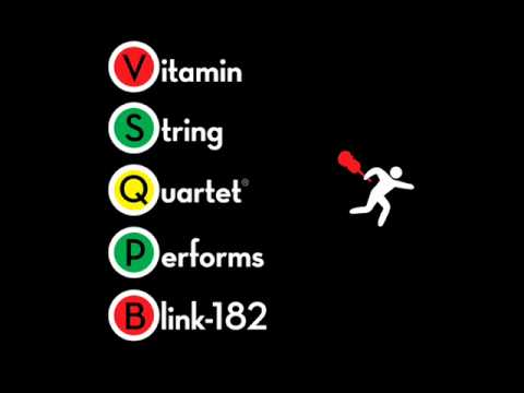 Adam's Song - Vitamin String Quartet Performs Blink-182 -