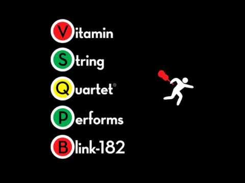 Adam's Song - Vitamin String Quartet Performs Blink-182 -