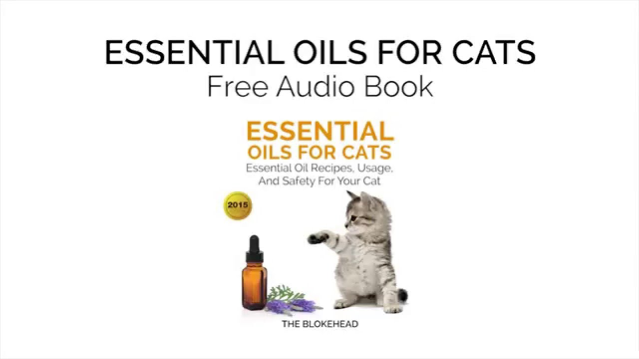 essential oils for cats essential oil recipes usage and safety for your cat youtube. Black Bedroom Furniture Sets. Home Design Ideas