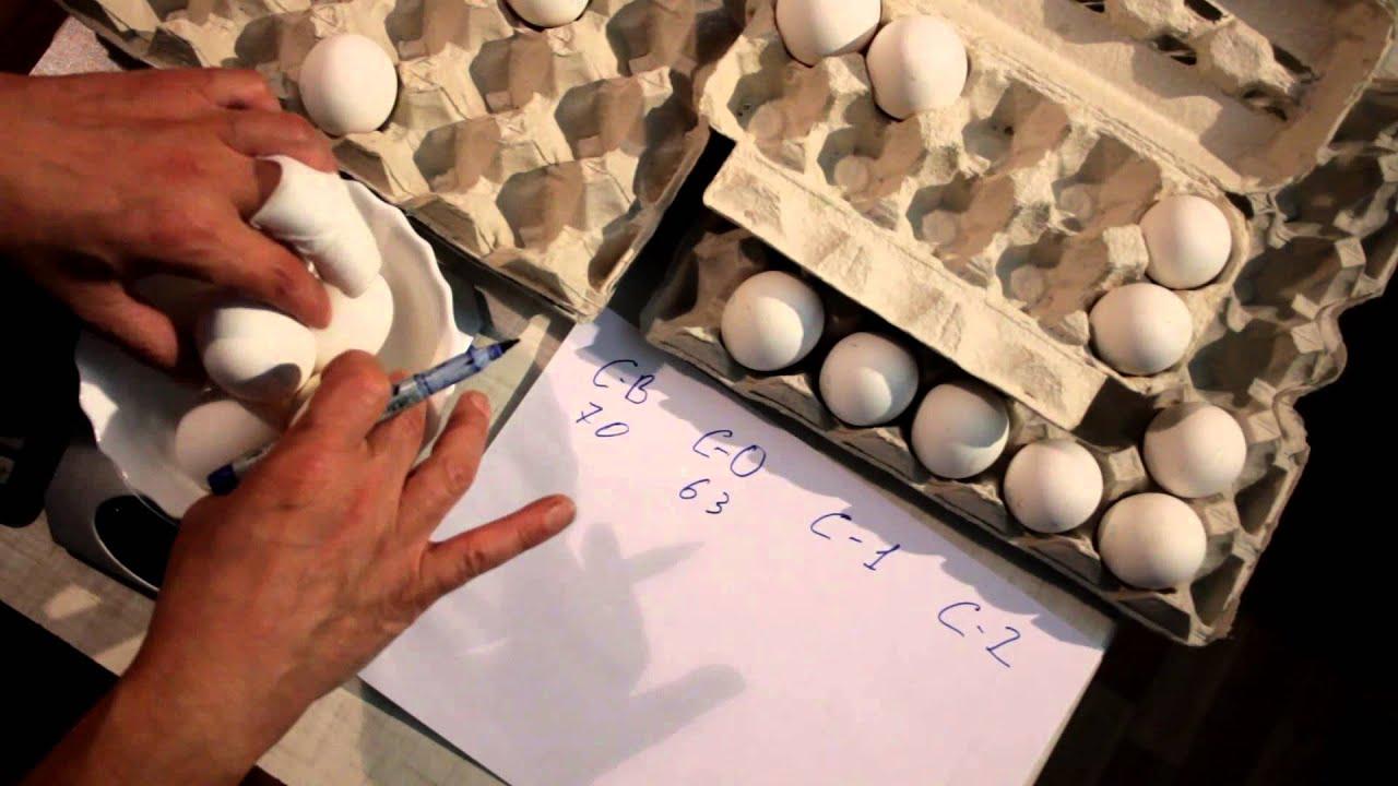 масса яйца с1