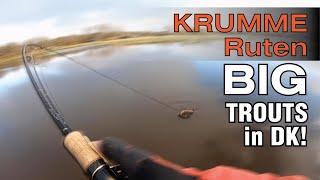 KRUMME Ruten am GEHEIMEN See Forellenangeln in Dänemark letzter Tag BIG Trout fishing