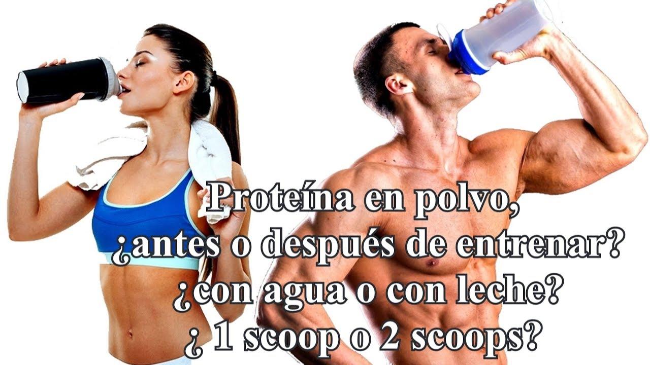 Que es mejor comer proteinas antes o despues del ejercicio