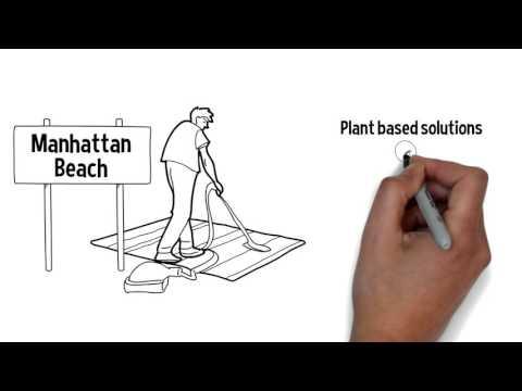 Organic Carpet Cleaning  Manhattan Beach