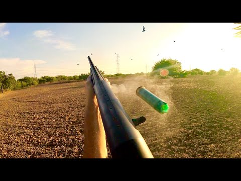 5 Man Dove Limit | The Best Opening Day Dove Hunting We Have Ever Hunted