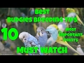 Best Budgies Breeding Tips | 10 Most Important Points In Detail | Complete Guidelines | Urdu/Hindi