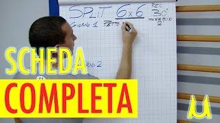 SCHEDA MASSA MUSCOLARE PALESTRA 6x6 IN MONOFREQUENZA BY UM