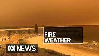 'Very dangerous' fire weather conditions affecting NSW | ABC News