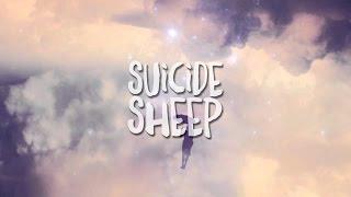 Julian Kruse - Fallen From The Sky