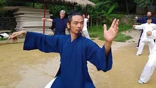 Wudang Taiji 13 - Chen Shiyu with Class