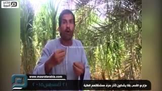 بالفيديو| مزارعو القصب بقنا: فين فلوسنا يا حكومة