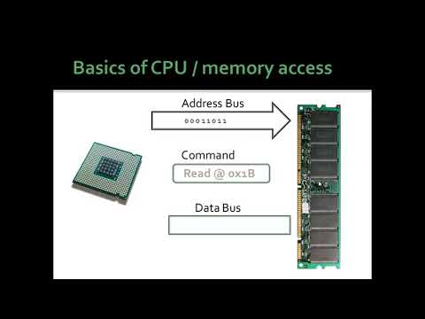 what is a data/address bus and how do they work