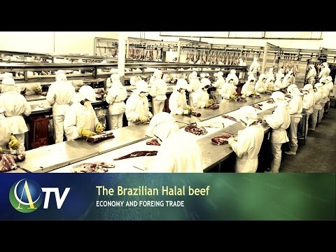 The Brazilian Halal beef | Economy and Foreing Trade