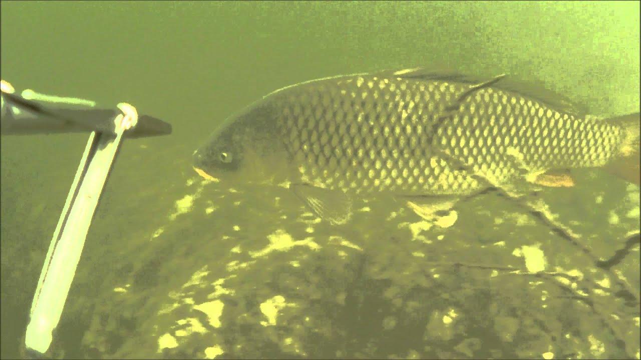 песни о рыбаках и рыбалке