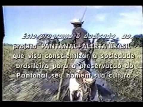 Projeto Pantanal Alerta Brasil- Matérias Jornalisticas nas Redes de TV- Parte 5