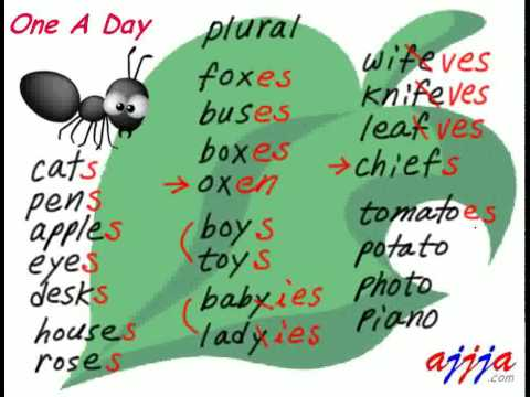 English Grammar - Plural 2