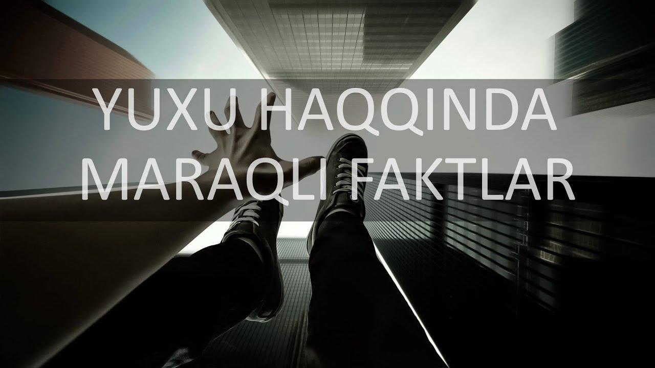 Yuxu Haqqinda Maraqli Faktlar Plaze Tv Youtube