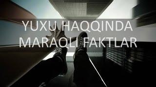 YUXU HAQQINDA MARAQLI FAKTLAR PlAze TV
