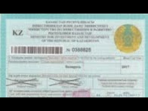 Казахское разрешение (дозвол). Как заполнить разрешение (Дозвол) на перевозку из/на/через Казахстан