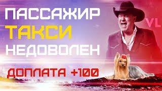 Пассажир такси недоволен доплатой за собаку, в сзт такси Максим