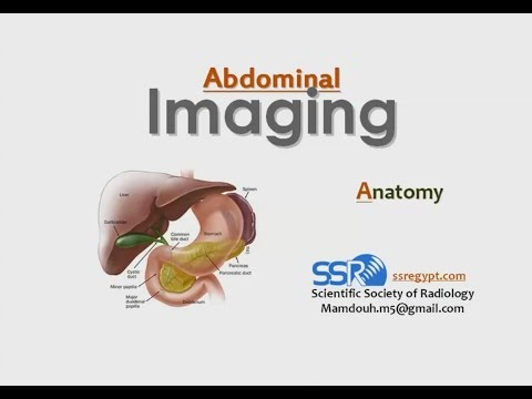 Radiological Anatomy Of Gastrointestinal Tract - Prof. Dr. Mamdouh Mahfouz (In Arabic)