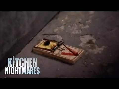 Kitchen Nightmares Roaches