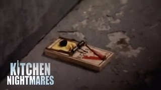 Rats and Roaches in Restaurant Basement - Kitchen Nightmares