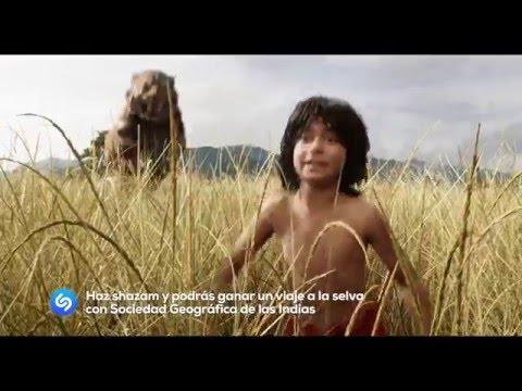 el-libro-de-la-selva-(the-jungle-book)-|-concurso-shazam-|-disney-oficial