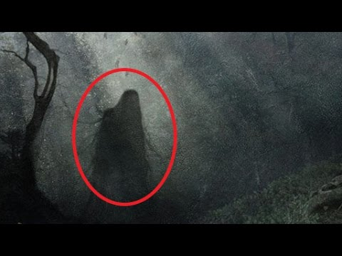 Thumbnail: Is This The WORLD'S MOST HAUNTED FOREST?