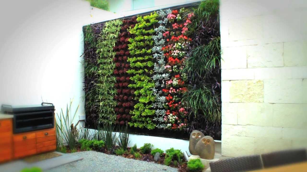 Generacion verde jardines verticales youtube for Plantas para muros verdes verticales