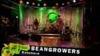 Beangrowers Live on VIVA TV