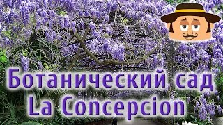 Отдых в Испании. Ботанический сад Малага.(Ботанический сад в Малаге одна из знаменитых достопримечательностей Испании – - http://livespain.ru/amigo-spain-book/?utm_sourc..., 2014-07-28T10:38:43.000Z)