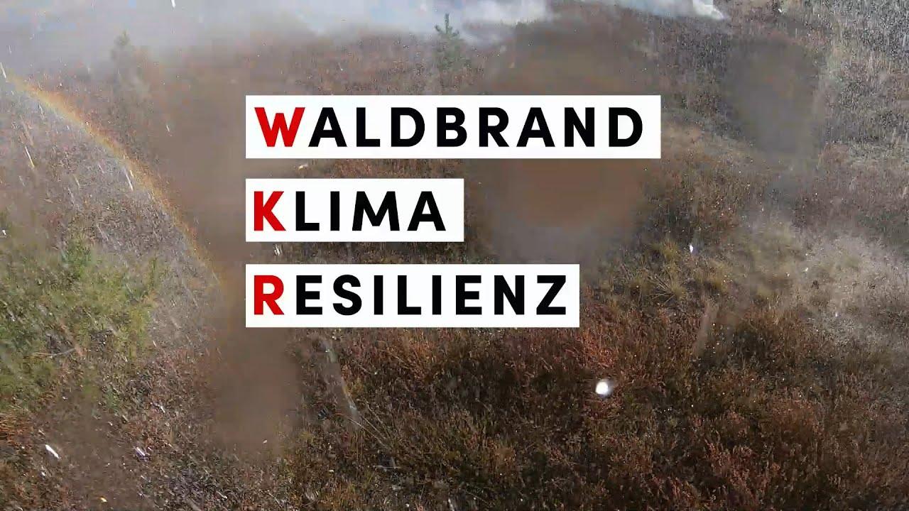 """Ein anderer Blick auf das """"Waldbrand Klima Resilienz"""" Projekt"""