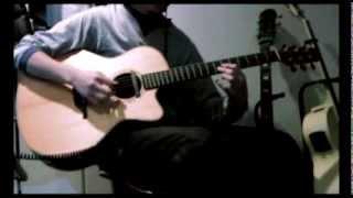 μ-ziq - Brace Yourself Jason (Acoustic cover) with loop Machine