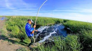 Рыбалка 2020 ЁКЛМН , кастинговая сеть против паука ! Рыбалка на паук подъемник весной 2020