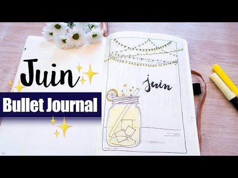 PLAN WITH ME | Organisation Bullet Journal JUIN