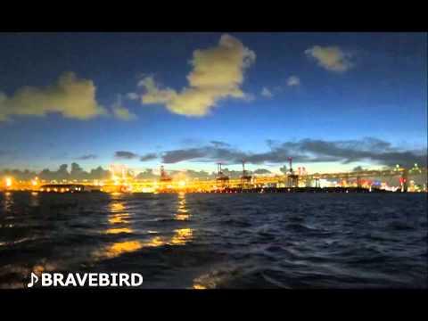 BRAVEBIRD UnloveEP Promo Mix mp3