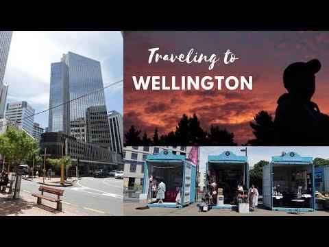 TRAVELING NEW ZEALAND 2020   Wellington To Picton