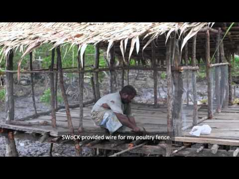 SWoCK Project Backyard Organic farming in the Langalanga Lagoon