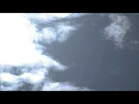 Living UFOs (Unknown Sky Entities) Examined